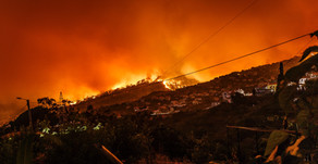 Wildfires: Here's How You Can Prepare