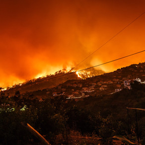 The Western Wildfires Are Affecting People 3,000 Miles Away
