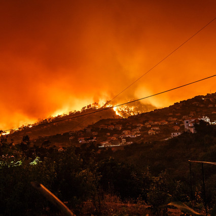 The Burning State