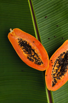 Papayas, raw