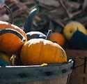 Image of pumpkins by Aaron Burden