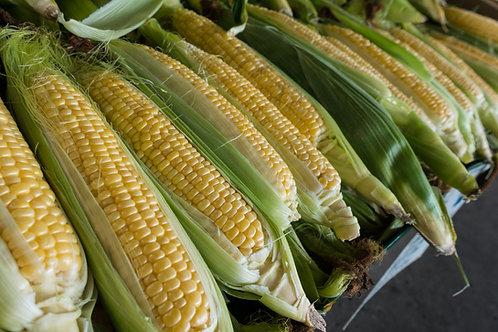 Dozen Super Sweet Bi-color Sweet Corn