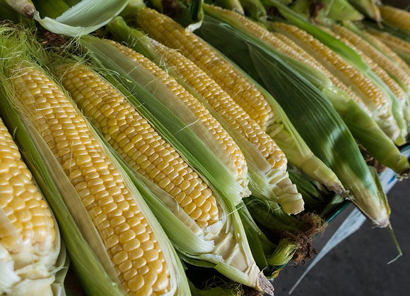 Fresh Corn on Cob X 3 (per item)