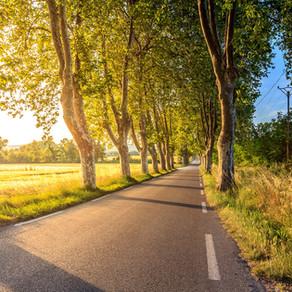 Run Your Healthiest Marathon: Part 2
