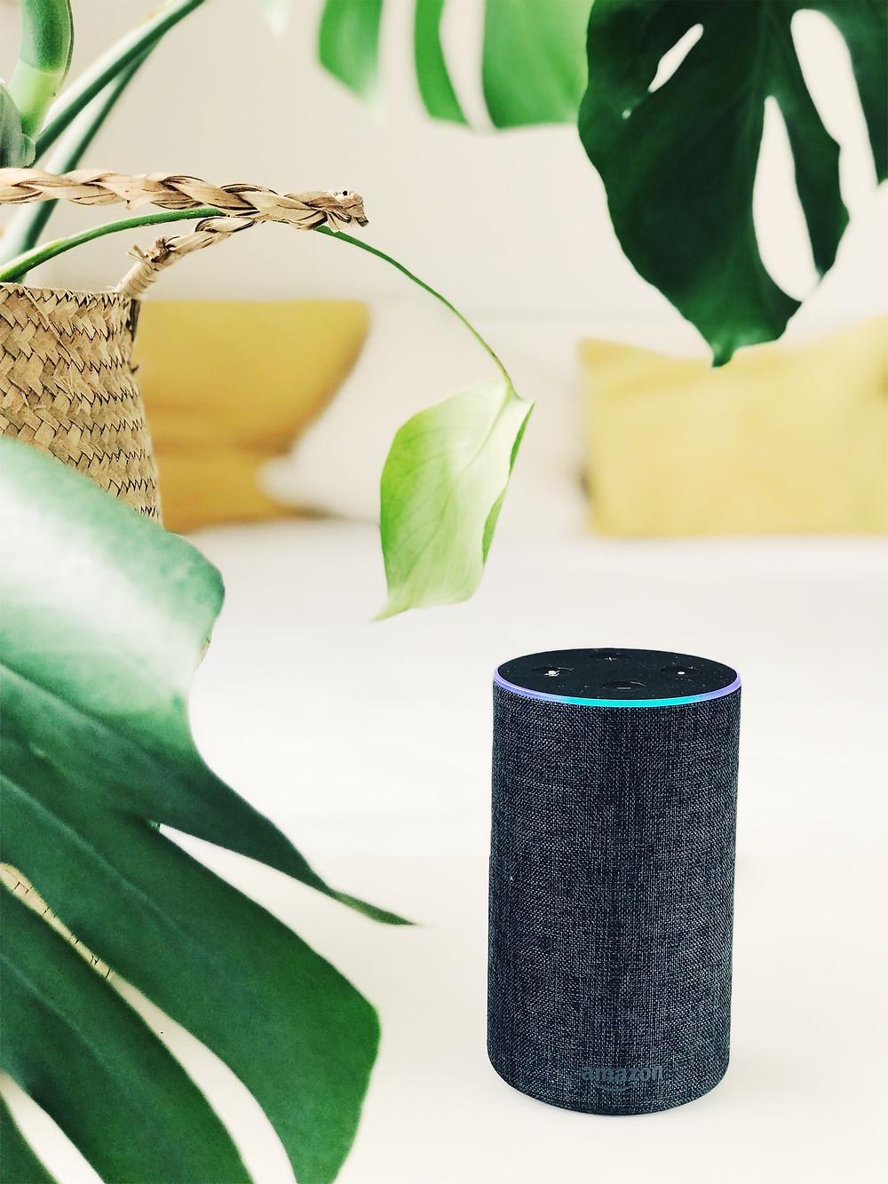 Assistant vocal exemple Alexa