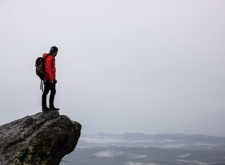 Five Lessons We Have Learned About Organizational Survival