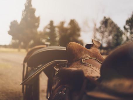 Western Saddles: 7 Signs Of Poor Fit