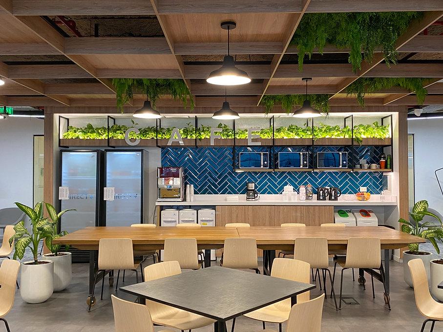 Ravintoloiden viherkasvit ja pöytäkasvit