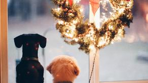 Karácsonyi Elengedés