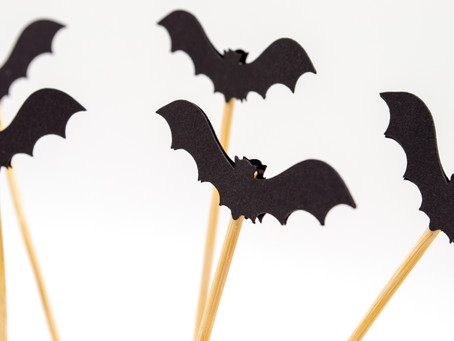 How Bats Are Helping The Blind