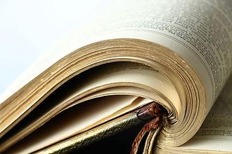 Copycopia: editorial services
