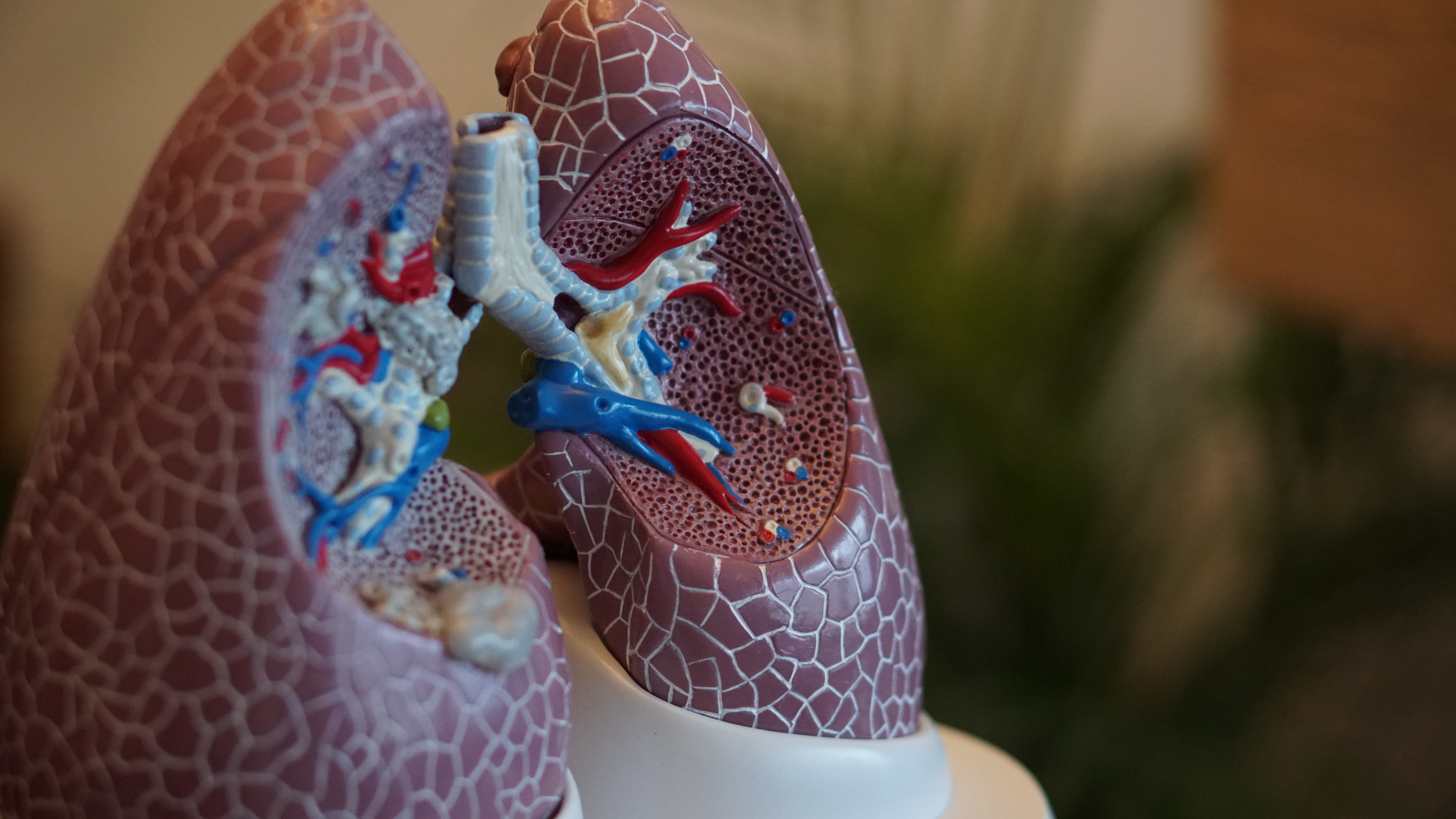 RCN Accredited Asthma/COPD Course