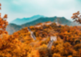 Image by Hanson Lu