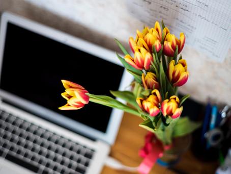 היתרונות של פרחים וצמחים בבית