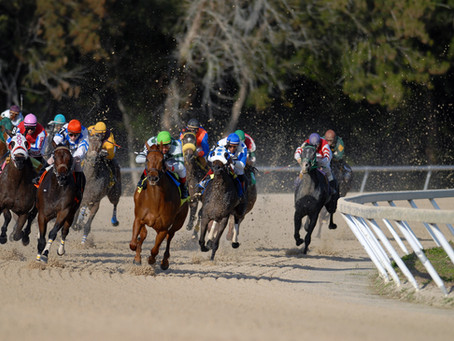 What is Equine Recoup's competitive advantage?