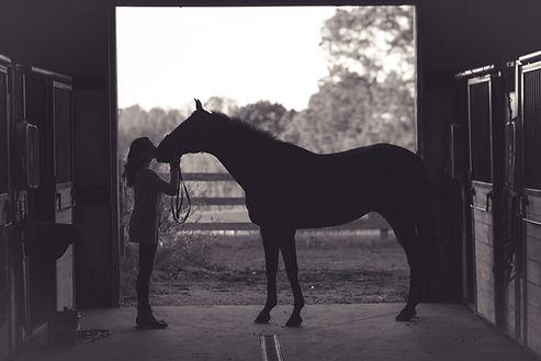 Hilliard Ohio horseriding lessons
