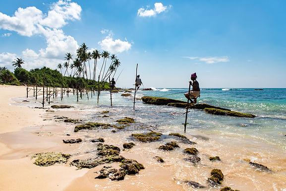 Sri Lanka: An Adventure into the Wild