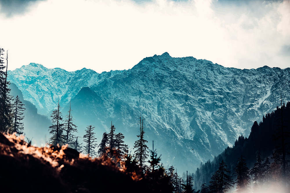 latest covid 19 guidelines in Himachal Pradesh