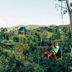 Εθνικό Πάρκο Τορτουγκέρο, Κόστα Ρίκα | Εντυπώσεις