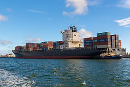 Sea Freight Management Software