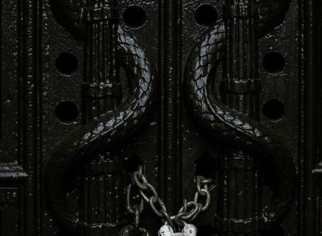 Die Schlange, die eine Wurzel umarmt