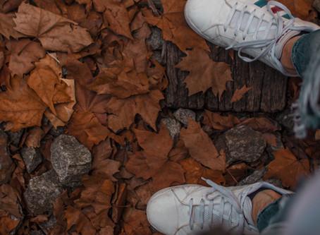 É tempo de deixar as folhas secas caírem