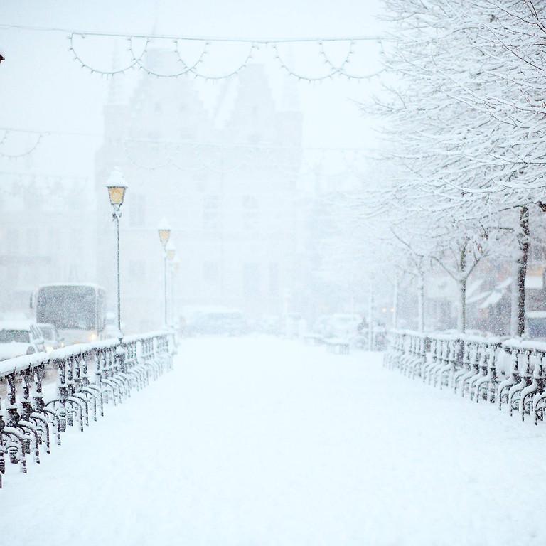 SOLD OUT - Winter Wonderland