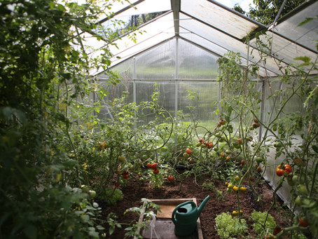 The Art of the Greenhouse