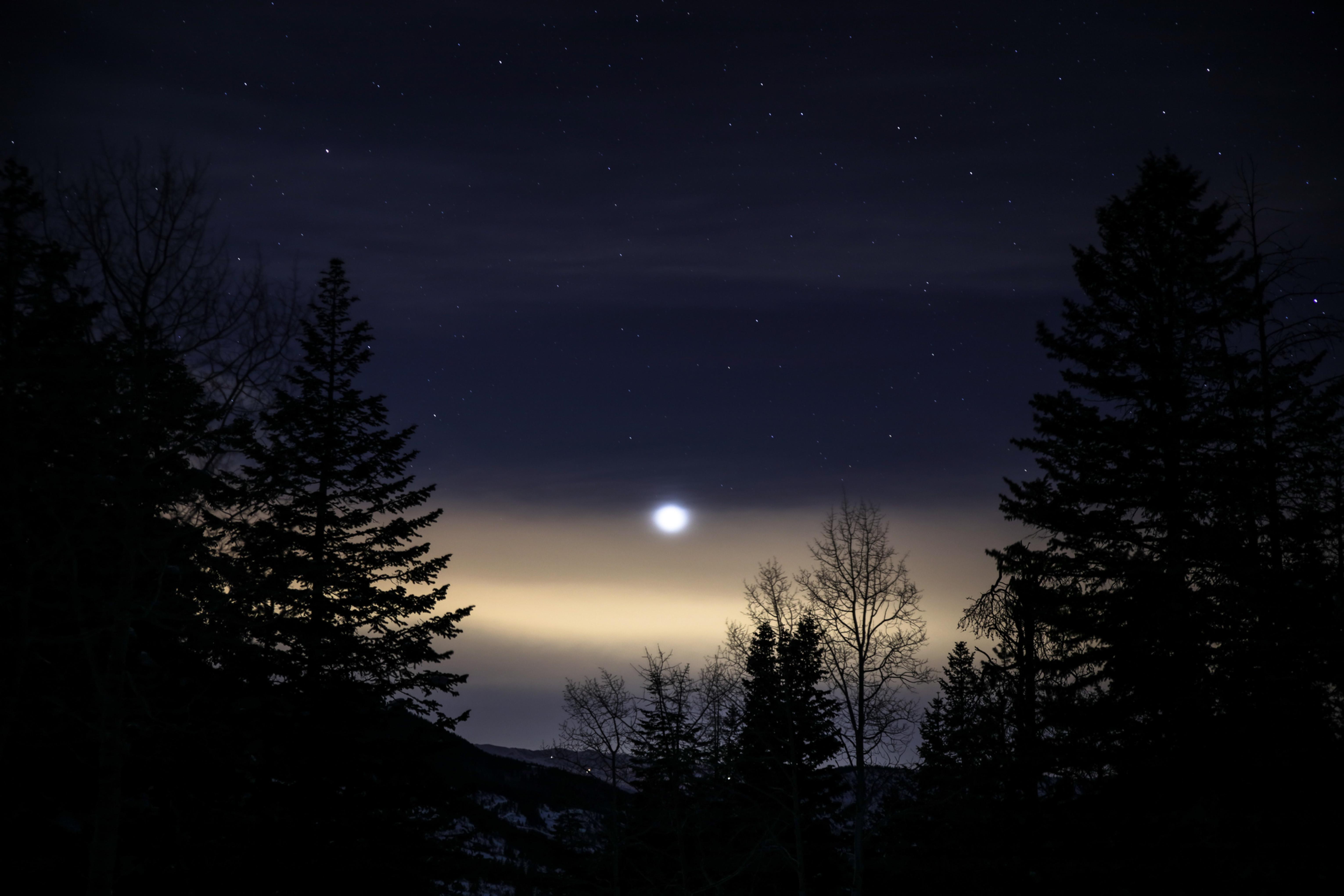 Rising Moon Walk