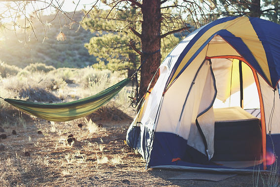 Camping in Kelseyville: Image by Laura Pluth
