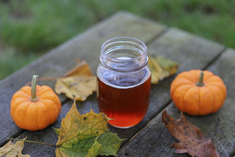 fall activities pumpkin beer tour