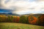 West Virginia State Referrals