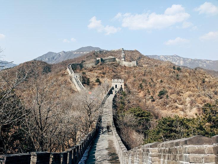 MARBRE VIOLET FROM CHINA CARONA VIRUS SOLIDARITY BRACELET