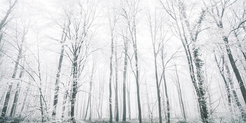 Breathwork Healing: Winter Series