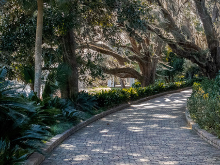 Why Tallahassee is the Best Spot to Enjoy a Valentine's Weekend