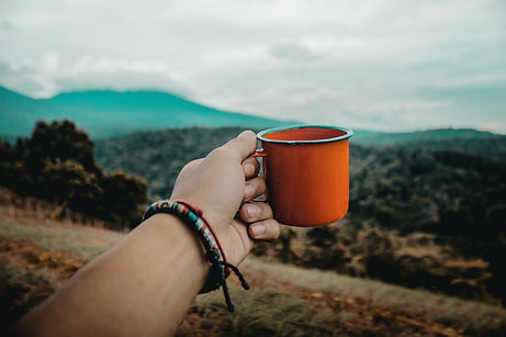 person holding coffee mug looking out into nature