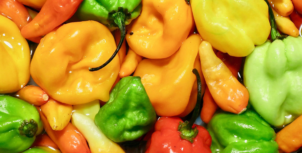 Very! Hot Peppers- 4-pack