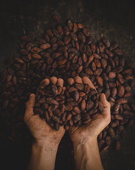 Holding coffee beans in closed palm