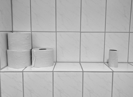 The Toilet Paper Absurdity