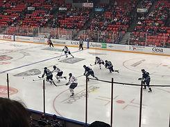 Ice Hockey game in Austria, the Zeller Eisbärens