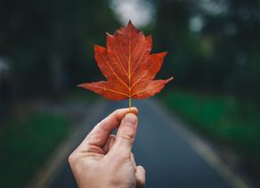 Setembro e a Tua sabedoria interior