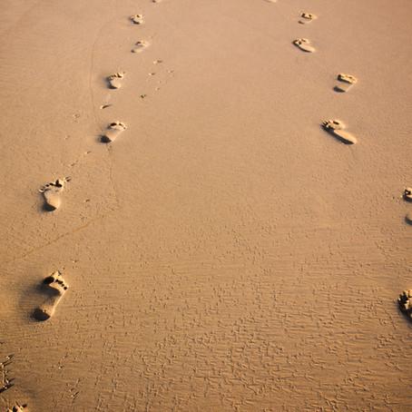 3. Cómo encontrar pareja para toda la vida - ¡Paso adelante! ¡Paso atrás! (mi entorno).
