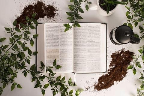 Fasting | Detoxifying