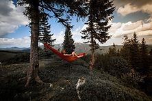 Avalanch sleeping - picture of woman lying in hammock between two trees