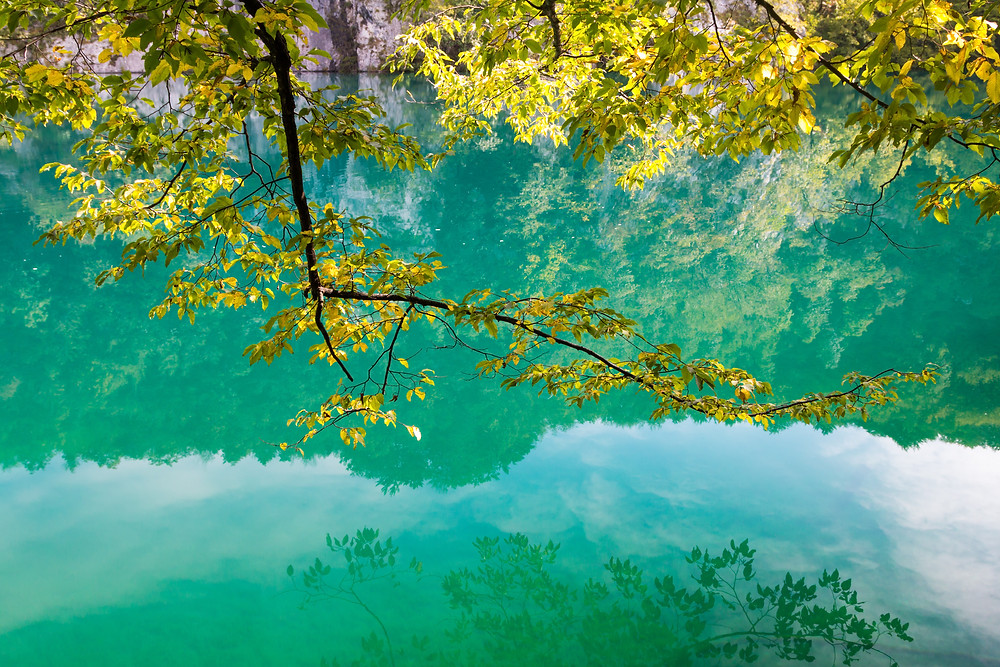 beautiful lake colors in Plitvice Lakes National Park