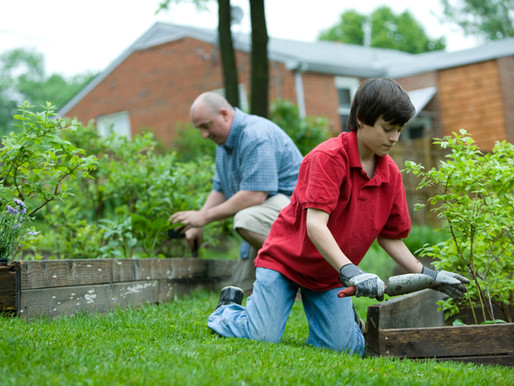 Should You Add a Garden to Your Home?