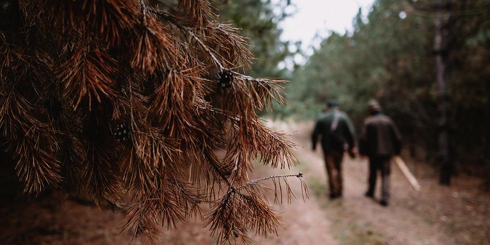 Men's Walking Group