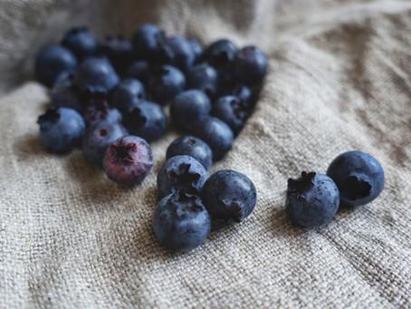 Blueberries in Poop