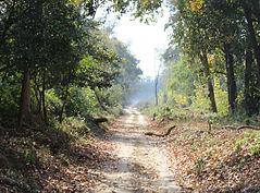 Image by Sanjeev Malhotra