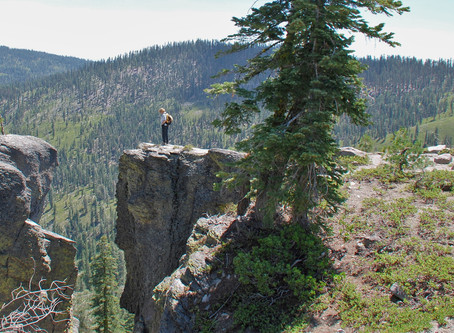 Don't let a fear of animals keep you from solo hiking!